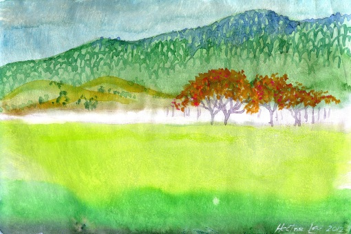 landscape005
