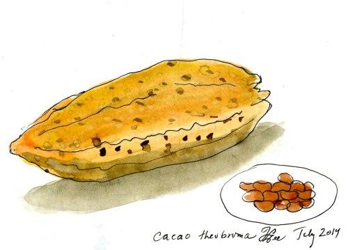 cacao013