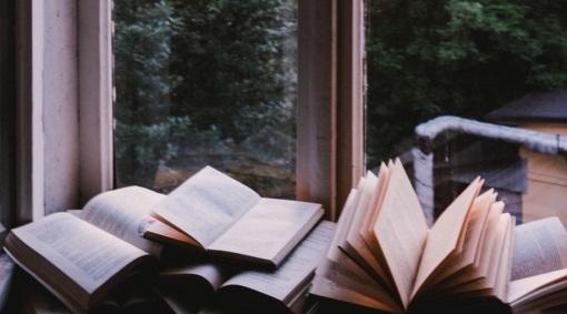 books at window